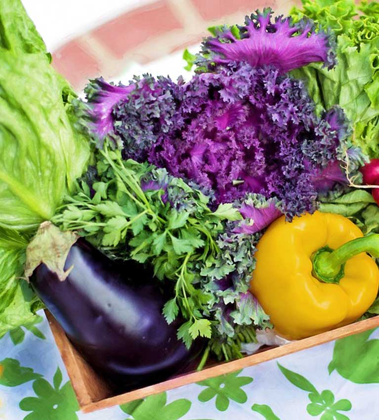 groentenfruit